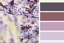Гармония цвета. Колористика. Цветовые сочетания