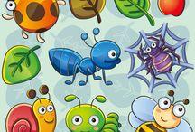 5e sec. Portfolio insecte
