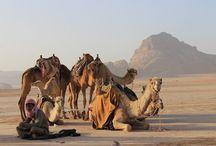 Lugares turísticos de Jordania
