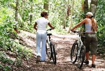 South Carolina Campgrounds / These are all Campgrounds/RV Parks in South Carolina that offer our 50% Discount!