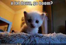 Simply cute!