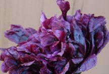 Violet Hour Botanicals / Micro-Apothecary Phytocosmetics / by Anastasia Sunshine