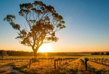 World's Best Trips for Wine Lovers / World's Best Trips for Wine Lovers