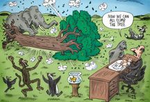 Slane Cartoons on Human Rights & Disability