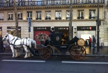 LAVINIA France