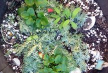 recipes for your garden