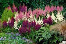Inspiratie tuin en crea / Ideeën voor de tuin