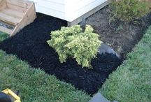 Garden ideas / Need inspiration to fix the mess of flower beds we have!
