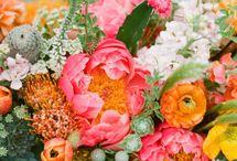 Wedding flowers / by Terry Oakley