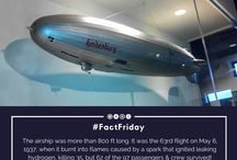 Facts / Check out amazing museum collection facts every Friday!