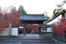 Shrine, Temple / 神社 / お寺