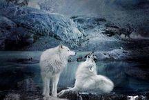 fantasy animals