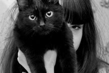 House Panthers / I never meant to become such a cat lover, but they won me over! / by Leigh Fullrich