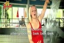dierentuindieren: liedjes en verhalen / by Marjan van Sluijs-Kruse