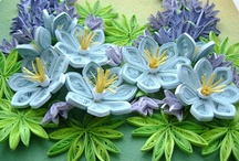 Paper Quilling  / by jan nimm