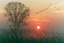 Dawn....