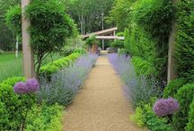 Beautiful Gardens / Lush landscapes, groomed gardens, exotic plants and flowers be inspired by these beautiful outdoor spaces / by Dering Hall