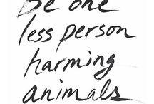 / Cruelty Free /