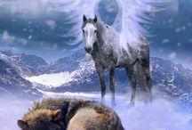 Lobos~Frases…