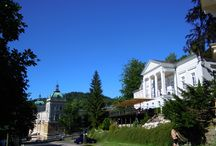 Gourmet Hotel Villa Patriot / Malý, útulný hotel jehož součástí  je gurmánská restaurace