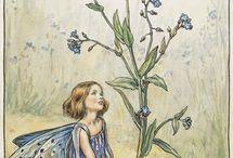 Cicely Mary Barker Flower Fairie