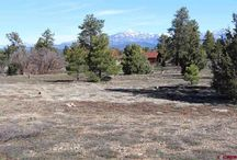 728 Mariposa Drive, Pagosa Springs, CO 81147 / Listing Broker - Shelley Low If you are looking for a FABULOUS lot this is it! Paved roads, city water, city sewer and HUGE VIEWS of the Pagosa Peak and more. This corner lot has several areas for the perfect home site and in the greatest neighborhood