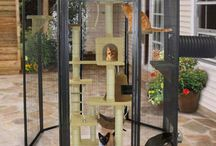 Cat cages outdoor