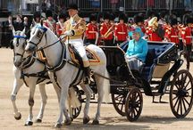 The Queen's Birthday Parade / The Queen's Birthday Parade - Although The Queen was born on 21st April, it's been a long tradition throughout the British monarchy to celebrate the sovereign's birthday on a public day during the summer.   Do you want to be part of this enchanting celebration? It is guaranteed that you will witness a piece of London's rich history!!
