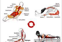 Physio & muscu