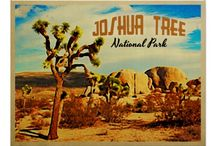 Joshua Tree, CA: Vintage Images / Vintage images from Joshua Tree and surrounding areas.