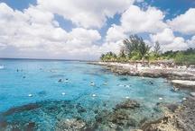 Western Carribean