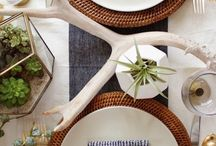 Thanksgiving / Inspiration and Ideas for your Thanksgiving Decor