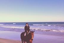 Horse riding / my love hendy♡