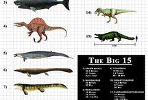 Největší zvířata na světě