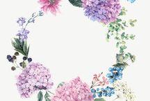 kwiatowe wianki