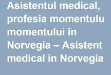 Articole din presa norvegiana