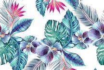 Pattern In Flower