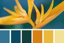 Kleurencombinaties / by Maris Kleurt