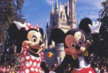 Disney World / by Newton's Travels