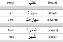Languageholics / Study Languages