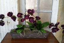Silk Arrangements  / Not only do our Designer's create fresh masterpieces, they create a variety of Silk Arrangements, too! Made with only the highest quality Silk Flowers, here are our newest Silk Arrangements we have in store. Custom Silk Arrangements available upon request.