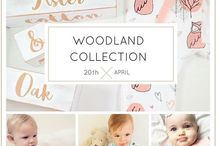 Woodland Collection / Aster & Oak Australian Organic Baby Clothing Unique Hand Drawn Designs © Beautifully Soft Cotton