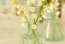 Love Lily of the Valley! / by Caroline Quirk Cestero