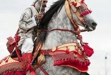 Epic Horses