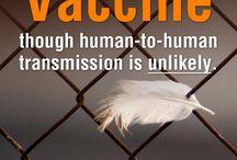 Avian Flu (H7N9)