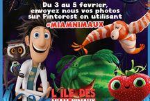 L'île des miam-nimaux : Tempête de boulettes géantes 2 #MiamNimaux