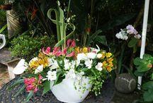 Cia de Arte Floral - Assinatura Mensal / Arranjos florais desenvolvidos para decoração de casas