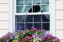 truhlíky s květinami