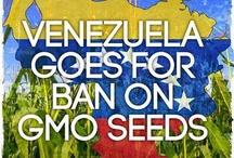 VENEZUELA LAW / See what is happening on the Venezuelan legal scene.