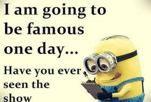 Funny things for every day